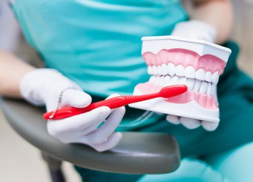 Deep Dental Cleaning St Augustine